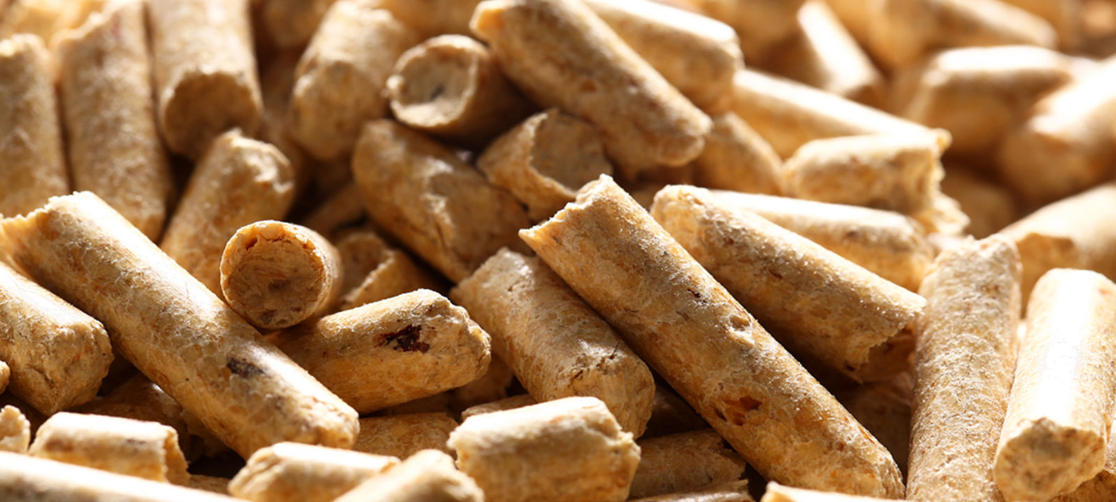 Holzpellets_Hotts